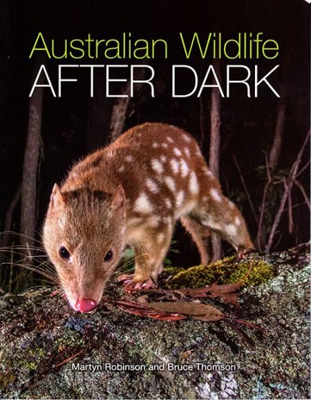 Australian Wildlife After Dark
