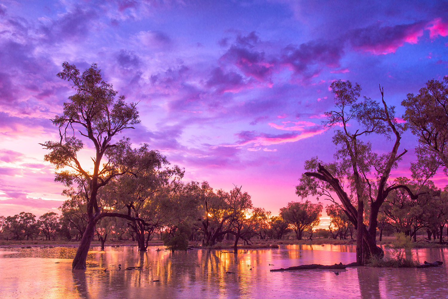 australian scenery landscapes and seascapes