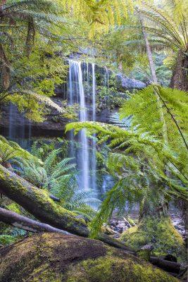 Russell Falls, Tasmania, Australian landscapes, waterfalls